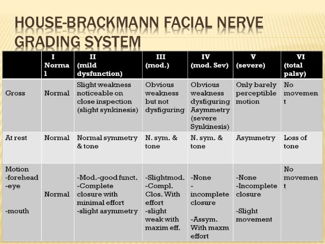 Hb scale for facial nerve